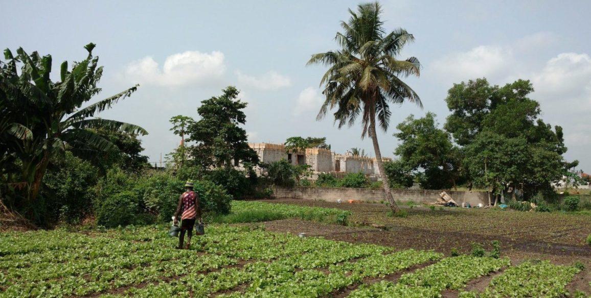 Rural Land Information System, IVORY COAST
