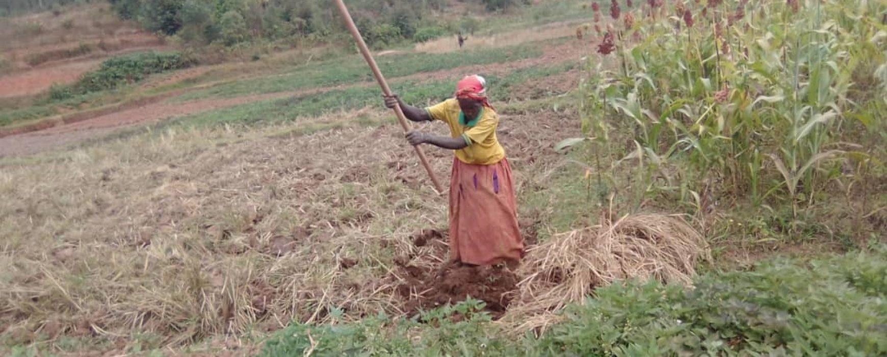 PRRPB : un atelier pour sécuriser les droits fonciers des plus vulnérables