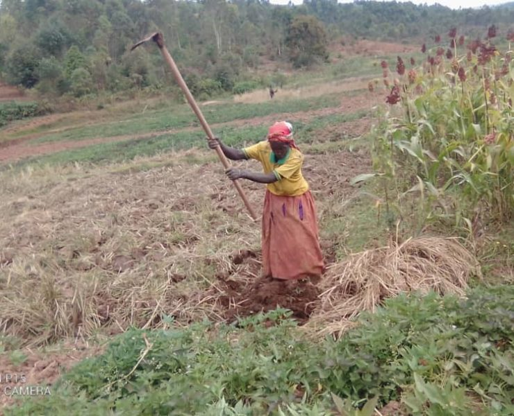 PRRPB project : a workshop to secure the land rights of the most vulnerable